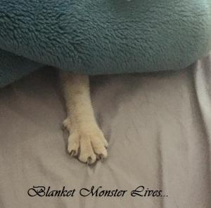 blanket monster