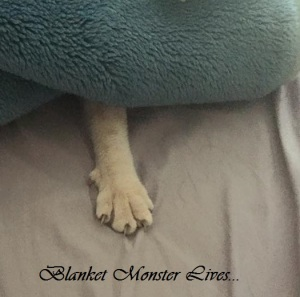 blanket monster
