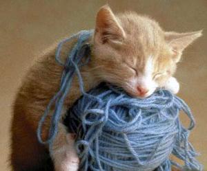 jax with yarn